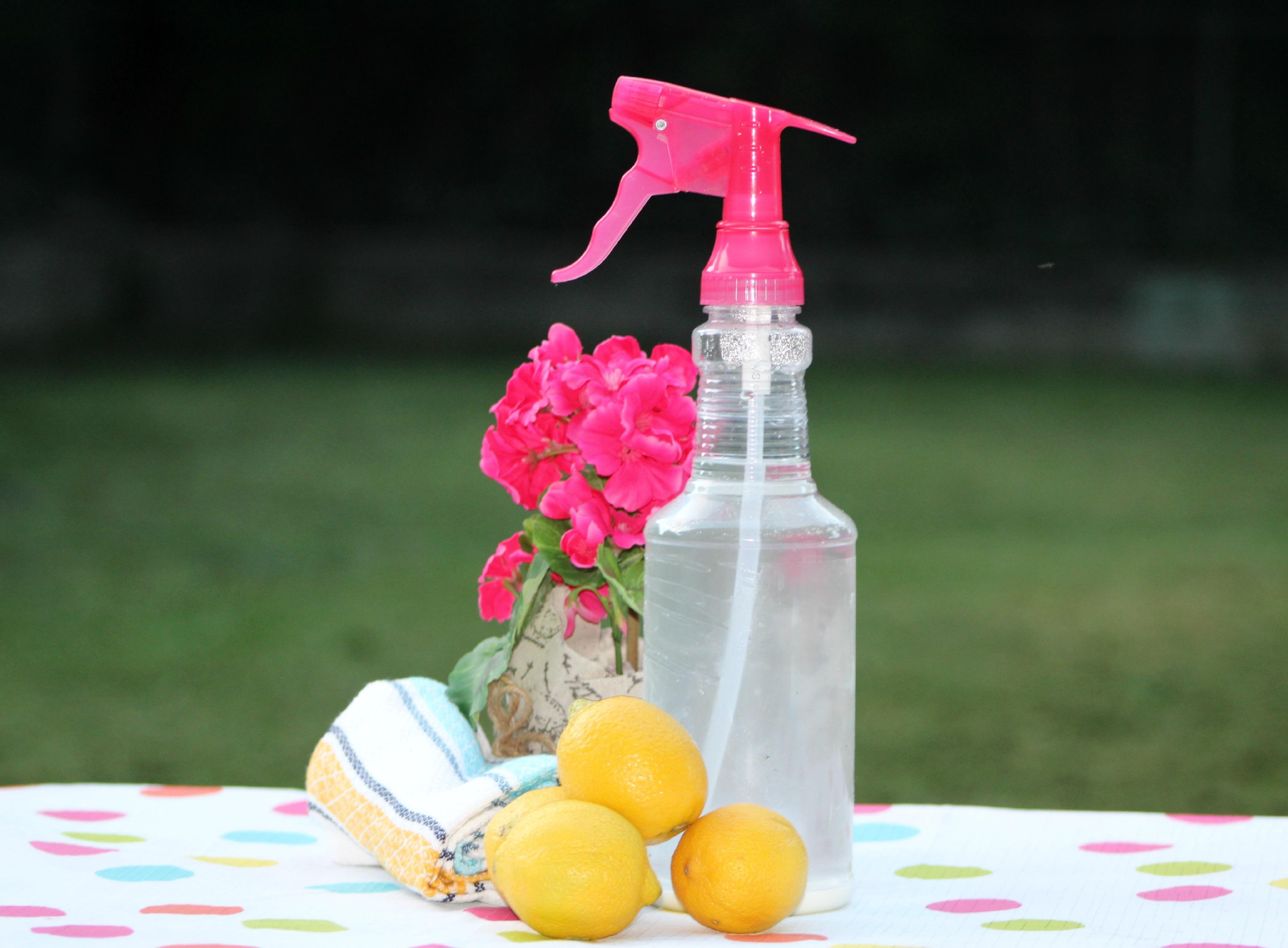 DIY Natural All Purpose Cleaner