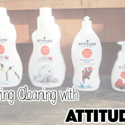 Spring Cleaning With Attitude